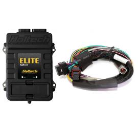 Haltech Elite 2500 centralina universale