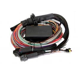 HALTECH Elite 2500 e 2500 T Premium Universal Cablaggio Wire-in